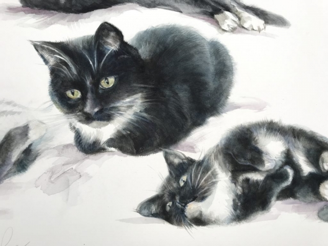 Watercolour painting of a cat