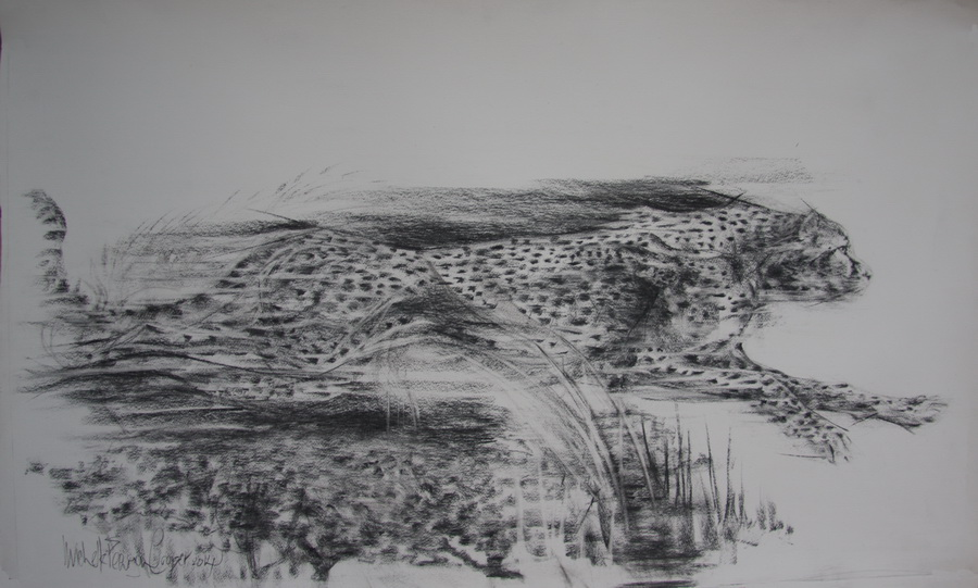 Charcoal Picture of a Cheetah at Speed