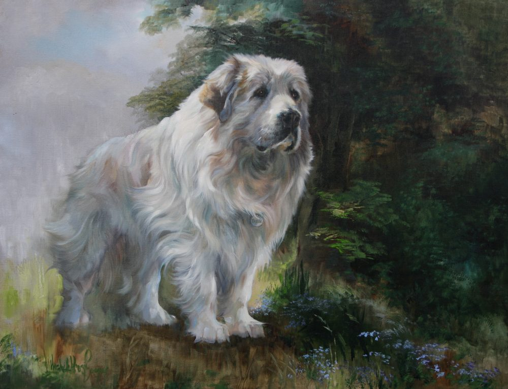 Commission Pyrenean Mountain Dog painting