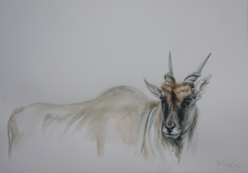 Painting of an Eland