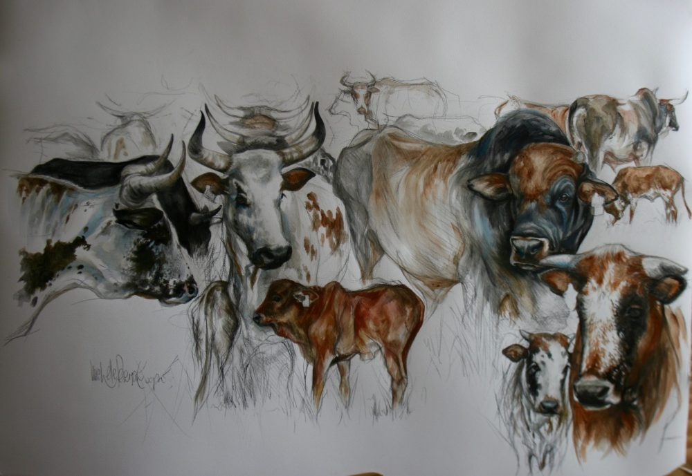 Charcoal and Watercolour Painting of Nguni