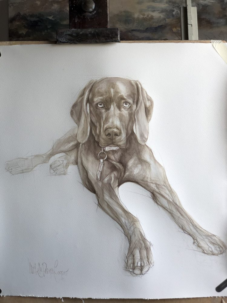 Watercolour Painting of a Weimaraner