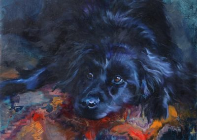 Commissioned painting of a dog