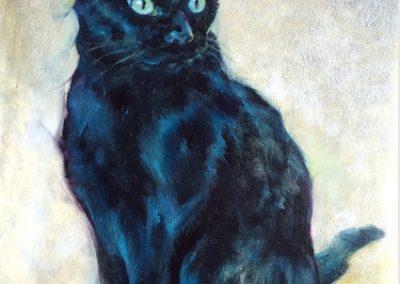 Black Cat Commissioned