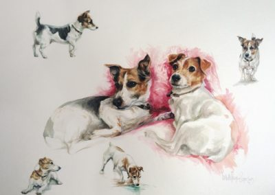 Water Colour 'Two Dogs' Studies - Commissioned