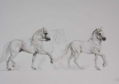 Andalusians Watercolour on Arches 16 x 30 inches.