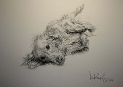 'Ella' Charcoal on Fabriano 22 x 30 inches.