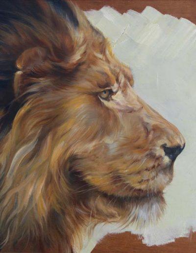 Leo Oil on Panel 37cm x 57cm
