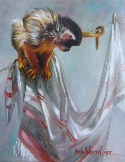 Monkey Washline