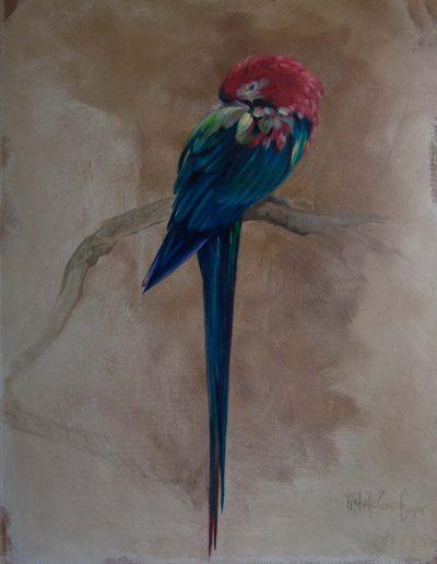 Parrot 80 x 53cm Oil on Wood Panel