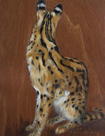 Serval Wild Cat Oil on Wood Panel - Donated to Whitley Wildlife Fund