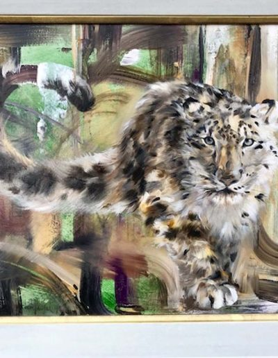 Snow Leopard Oil on Board 24 x 30 inches. Framed