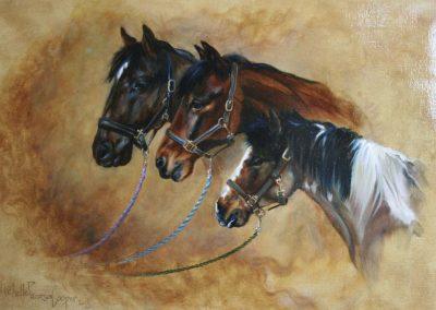 'Three Ponies' Oil on Canvas