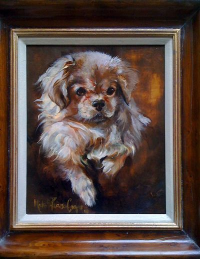 'Tibetan Spaniel' Oil on Wood 12 by 16 inches