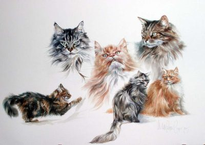 Watercolour of cats 22 x 30 inches.