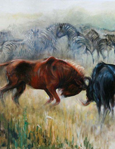 Wildebeest Fighting Oil on Canvas